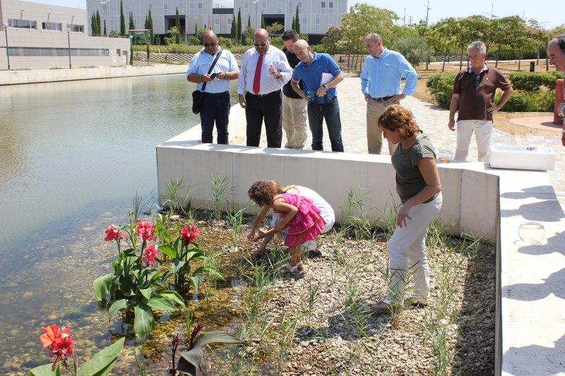 Suelta de peces para concluir la conversi n del estanque for Estanque ecologico