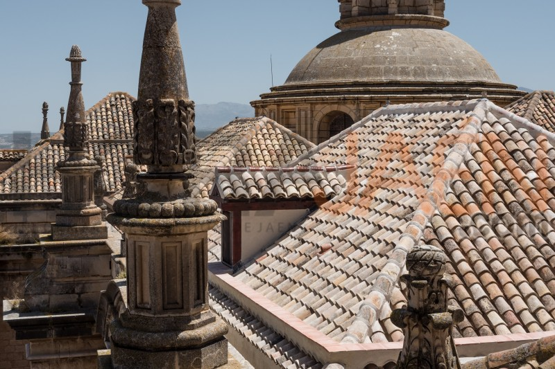 Tejado de la Catedral de Jaén.