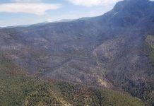 Zona afectada por el incendio de Segura de la Sierra.