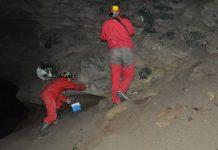 Grupo de espeleología de Villacarrillo en el interior de la Cueva Secreta del Sagreo.