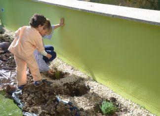 Plantación de especies en el Jardín de los Sueños.