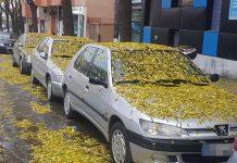 Vehículos estacionados en Avenida de Madrid. FOTO: HoraJaén