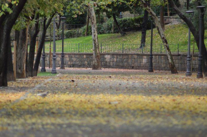 El Paseo de las Bicicletas llovido y con las hojas en el suelo. FOTO: HoraJaén