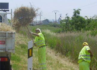 Operarios de limpieza de Andalucía limpian el margen de unas de las carreteras de la provincia.