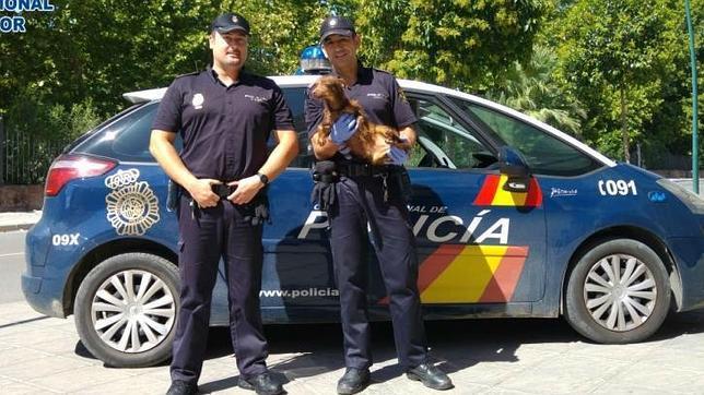 Los agentes que rescataron al perro cuando agonizaba.