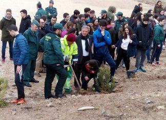 Repoblación forestal en la Academia de la Guardia Civil.