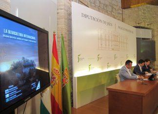 Presentación libro La olivicultura internacional