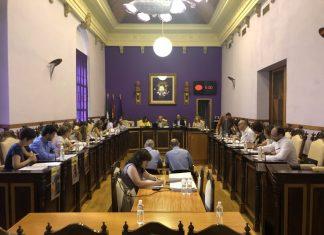 Pleno del ayuntamiento donde se ha aprobado esta medida.