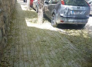 Estado de la calle Almodovar en Jaén.