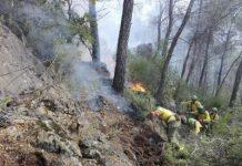 Trabajadores de Infoca en la extinción de un fuego. FOTO: Infoca