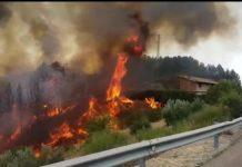 Incendio de Jabalcuz por el que ha sido condenado el menor de edad. FOTO: HoraJaén
