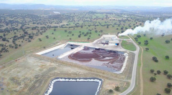 Planta de Bioland Energy en La Carolina. FOTO: Grupo Oleícola Jaén