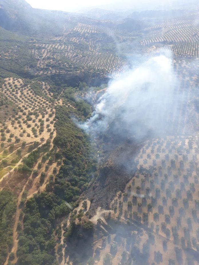 Imagen del incendio declarado en Martos. FOTO: Infoca