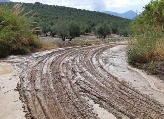 Camino de la Dehesa.