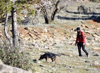 Miembro de protección civil de Jaén con uno de los perros del servicio.