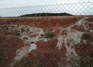 Cemento tapando las madrigueras en Linares-Baeza. FOTO: FAC
