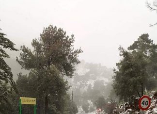 Nieve en el Puerto de las Palomas.