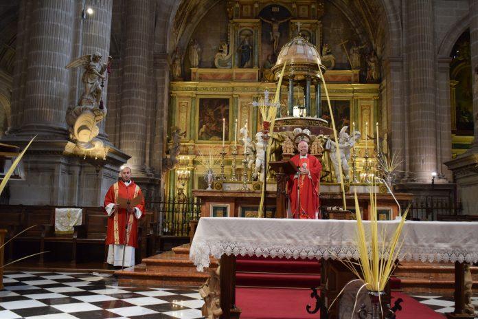 Misa del Obispo durante este Domingo de Ramos.