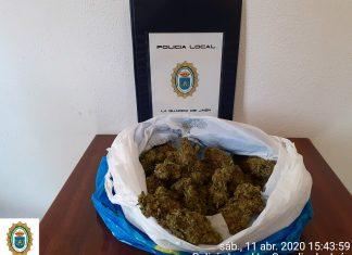 Marihuana incautada por la Policía Local La Guardia de Jaén.