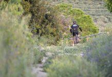 Vía Verde de Jaén.