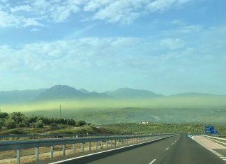 Espectacular manto de polen de olivo sobre Jaén. FOTO: IFP Rescate