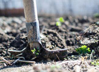 empleo-jaen-jardinero-horajaen
