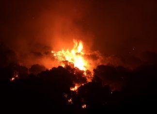 Incendio en Quesada. FOTO: HoraJaén
