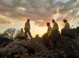 Bomberos forestales tras extinguir el incendio de Quesada. FOTO: Infoca