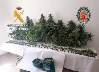 Marihuana incautada en Alcalá la Real.