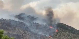 Imagen del incendio de Quesada, dentro del parque natural de Cazorla, Segura y Las Villas. FOTO: HoraJaén