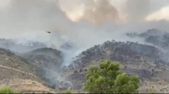 Incendio forestal de Quesada. FOTO: HoraJaén